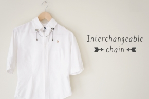 Interchangeable chain